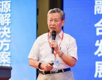 中国工程院院士<em>杜祥琬</em>:煤电继续扩张会造成新的产能过剩