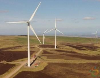 风力发电对环境的影响超乎人们的想象