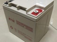 泰力达蓄电池6GFM12-24     12V/24AH
