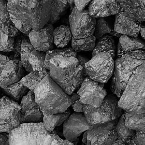 烤烟煤八一五块煤八零块煤籽煤
