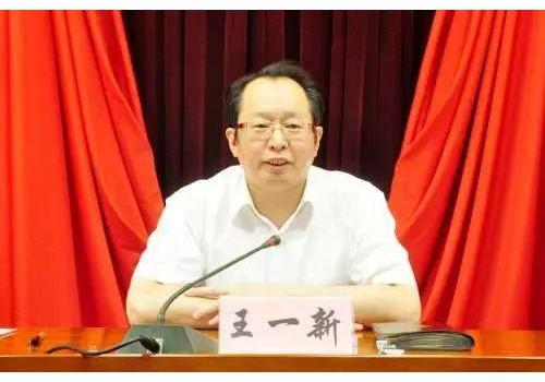 山西省副省长王一新:把山西打造成氢能发展排头兵