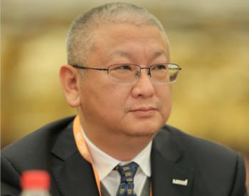隆基股份总裁李振国:PVSEC是全球性光伏盛会 期待未来绿能世界