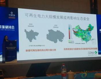 大自然保护协会罗永梅:可再生能源发展要清洁更要绿色