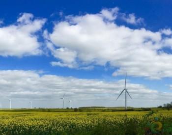 独家翻译|维斯塔斯在巴西开设<em>巴西风电</em>涡轮机工厂