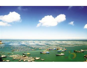浙江大力开展蓝色海湾整治,攻坚近岸海域污染防治