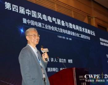 CWPE2019   <em>哈尔滨电气集团</em>苗立杰:大型双气隙永磁风力发电机的研究