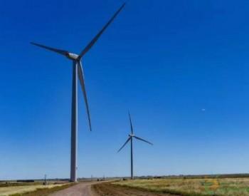 """这个被称为""""中阿新能源合作里程碑""""的风场并网了"""