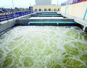 陕西河流水质前十月同比稳中有升