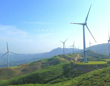 三峡<em>集团</em>彭作为:全力推进广东海上风电规模化开发