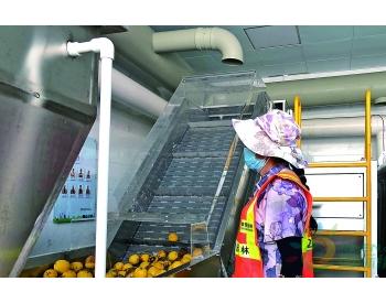 广东东莞进一步提升<em>易腐垃圾</em>处理能力 东城下桥水果市场先行先试