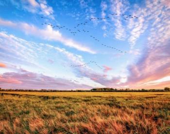 《条例》明年实施 铁腕治理乌海及周边地区大气污染