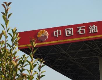 """中国石油抱得多个""""金娃娃"""""""