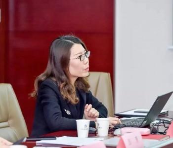 古瑞瓦特与<em>越南</em>工贸部代表团深入探讨可再生能源发展路径