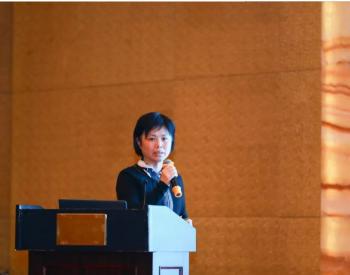 姚珉芳:如何协同构建天然气市场新格局?