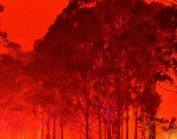 3.5亿吨二氧化碳!<em>澳大利亚大火</em>带来的后果严峻!