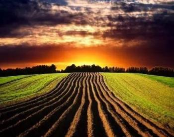 口粮安全!耕地土壤修复问题及防治对策