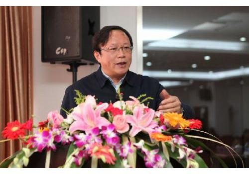 国务院政策研究室司长唐元:光伏建筑一体化前景可观