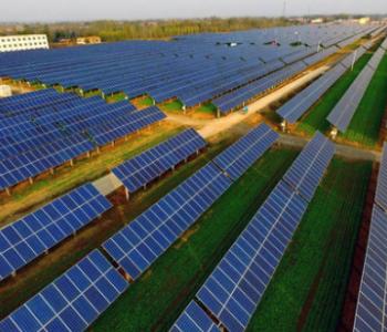 140万人!阳光电源2020PAT线上会议热度空前