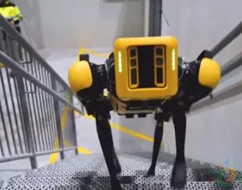 刚刚,一机器人正式入职<em>石油</em>公司!