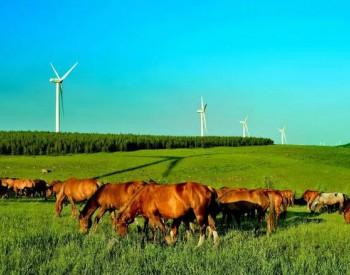 国际能源网-风电每日报,3分钟·纵览风电事!(2月18日)