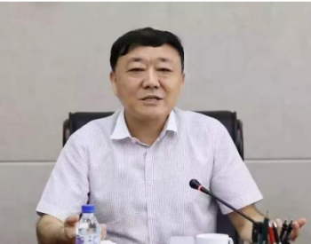 辽宁省能源产业控股集团有限责任公司副总经理刘彦平被开除党籍和公职