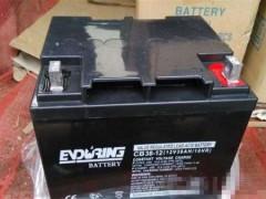 ENDURING恒力蓄电池12v24ah代理