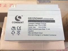 CONSENT光盛蓄电池GS12V24AH报价