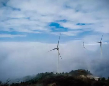 刘满平:降低企业用电成本,体现国网担当作为