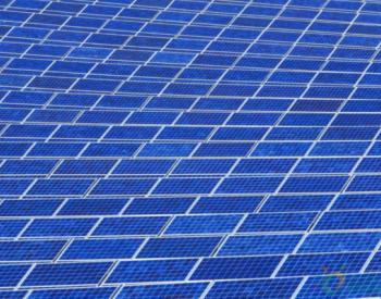 独家翻译   147MW!<em>荷兰太阳能</em>项目开发商将建设该国最大大型光伏电站