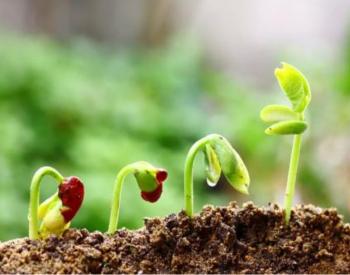 财政部:鼓励<em>土壤污染</em>防治任务重、具备条件的省设立基金