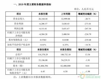 岱勒新材:2019年亏损4584万 同比下降234.79%!