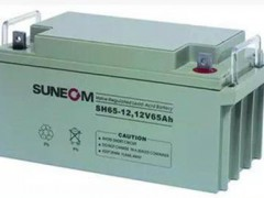 SUNEOM蓄电池新能SH65-12/12v65ah性能