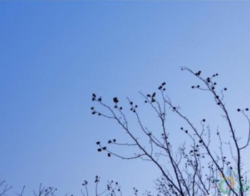 2020年2月江苏南京空气质量创近8年同期最好水平
