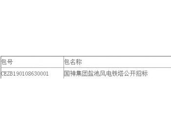 中标丨国神集团宁夏盐池风电<em>铁塔</em>采购项目公开招标中标结果公告
