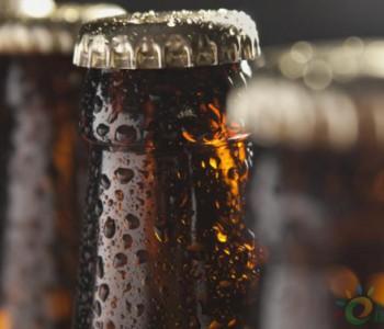 独家翻译|Enel<em>墨西哥</em>分公司与喜力啤酒签署电力采购协议