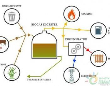 利用再生物质分离氢气的新型<em>生物燃料</em>系统