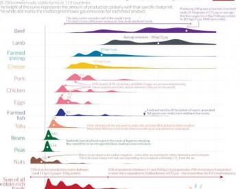 蛋白质的碳足迹:什么食品的温室气体排放最少?