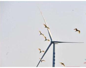 湖南江永风力发电助力绿色发展