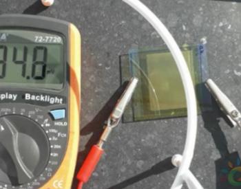 研究人员利用木瓜果实中的酶对太阳能电池进行有机工程处理