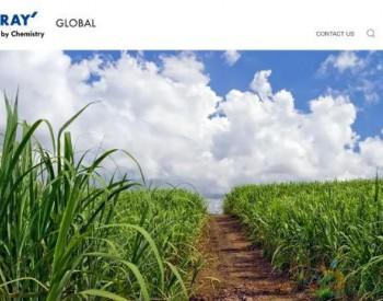 日本东丽开发首款100%植物基涤纶<em>纤维</em>,减少<em>碳</em>排放!