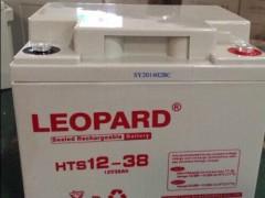 LEOPARD免维护蓄电池,美洲豹品牌蓄电池12v100ah