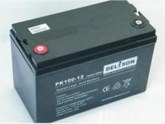 DELISON免维护蓄电池,德利森品牌蓄电池12v24ah