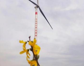 """50多年后,一群风电人为河南兰考再度带来绿色""""新希望"""""""
