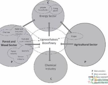 德国<em>发展</em>生物质精炼 促进浆纸等传统行业转型