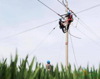 安徽涡阳:保供电保复工