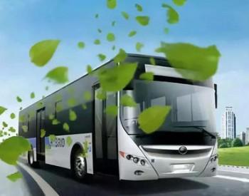 <em>丰田</em>与日野合作研发重型燃料电池卡车 续航里程约为600公里