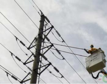 国网上海电力首用蜘蛛车搬鸟巢 保障企业平稳可靠用电