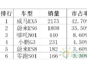 新造车8月销量排行:<em>威马</em>EX5领先 小鹏G3大幅下滑
