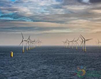 日企与比利时<em>海洋工程</em>公司合作 引入先进海上风电技术