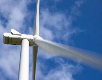 维斯塔斯中国收到84 MW V136-3.8 MW订单